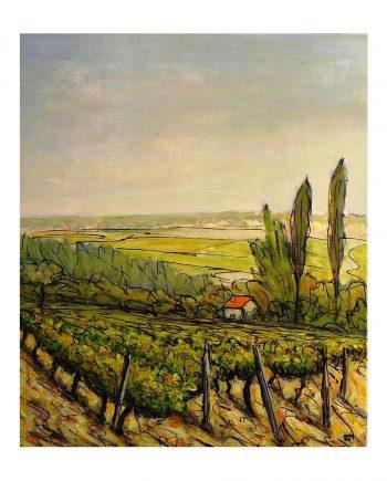 N°1 la maison de vignes